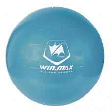 Exercise Ball - Blue