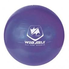 Exercise Ball - Purple