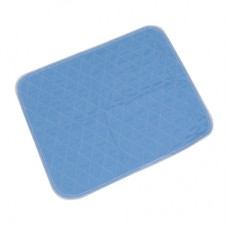 Chair Pad - Blue